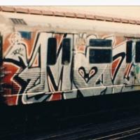 Min_NYC_HMNI_Spraydaily_14