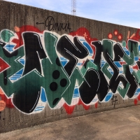 Neat_PIX_DINMA_Sweden_Graffiti_Spraydaily_15
