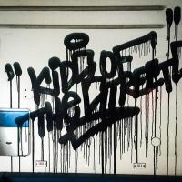 Noee_HMNI_Spraydaily_Graffiti_Czech-Republic_15