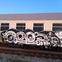 Oger_Spraydaily_HMNI_Graffiti_06