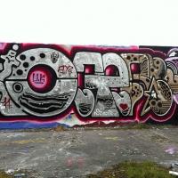 Oger_Spraydaily_HMNI_Graffiti_12