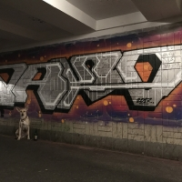 Pako_SM_Pakooner_HMNI_Kiev_Ukraine_Graffiti_Spraydaily_14