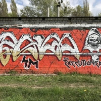 Pako_SM_Pakooner_HMNI_Kiev_Ukraine_Graffiti_Spraydaily_17
