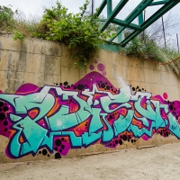 Poison_HMNI_SprayDaily_Graffiti_12