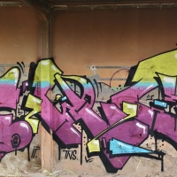 Ponk_HMNI_Graffiti_Spraydaily_10.jpg