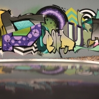 Pout Spencer_COPS_DH_Germany_Graffiti_Spraydaily_07