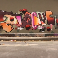 Pout Spencer_COPS_DH_Germany_Graffiti_Spraydaily_09