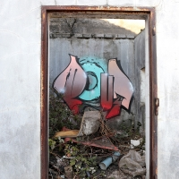 Pout Spencer_COPS_DH_Germany_Graffiti_Spraydaily_15
