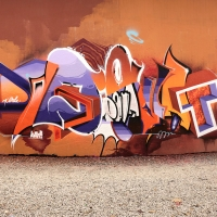 Pout Spencer_COPS_DH_Germany_Graffiti_Spraydaily_39