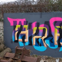 PREF_ID_Prefid_HMNI_spraydaily_hmni_Graffiti_London_11