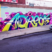 Queen-Andrea_Graffiti_Spraydaily_HMNI_06.jpg
