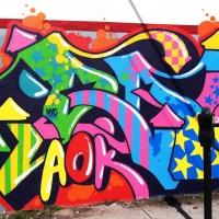Queen-Andrea_Graffiti_Spraydaily_HMNI_10.jpg