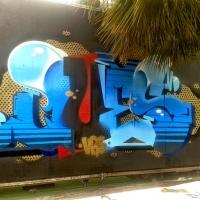 Ques_HMNI_Spraydaily_Graffiti_revolution