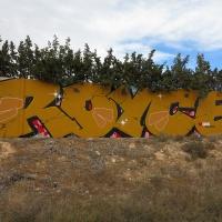 Roice_333_K5U_PRS_Elche_Spain_HMNI_Graffiti_Spraydaily_01