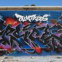 Roice_333_K5U_PRS_Elche_Spain_HMNI_Graffiti_Spraydaily_03