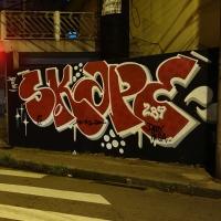 Skape289_Graffiti_HMNI_Spraydaily_02_Sao Paulo