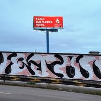 Vejam_CI_HMNI_SPraydaily_Florianopolis_Brasil_Graffiti_32