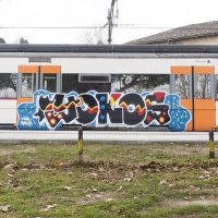 Yokos_TSK_Graffiti_HMNI_Spraydaily_06