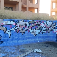 Z.Rock_AGLC_VDS_Graffiti_HMNI_Madrid_Spraydaily_12