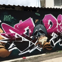 Zarim_LKS_RUA_Chiangmai-thailand_graffiti_spraydaily_02