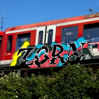 Zorn_BK-Crew_Hamburg_Graffiti_Spraydaily_04