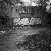 Alone_SprayDaily_09
