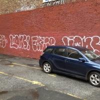Lions_Graffiti_SprayDaily_07