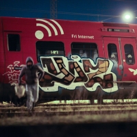 Mens-Du-Sov_Book_Graffiti_Spraydaily_Yos, FYS, FY_12.jpg