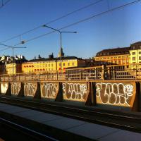 pilchi_cto_hm_graffiti_spraydaily_7