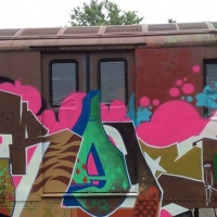 The Burning of Kingston_Graffiti_Spraydaily_16