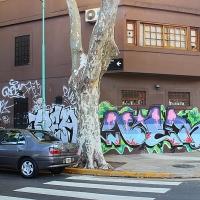 Buenos Aires_Travel-repport_Graffiti_Spradaily_allyouseeiscrimeinthecity_13.jpg