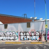 Buenos Aires_Travel-repport_Graffiti_Spradaily_allyouseeiscrimeinthecity_14.jpg
