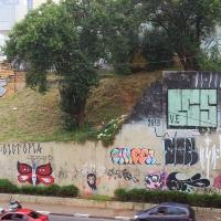 Graffiti_Sao-Paulo_Spraydaily_Allyouseeiscrimeinthecity_13