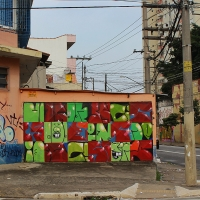 Graffiti_Sao-Paulo_Spraydaily_Allyouseeiscrimeinthecity_16_Finok, Ise