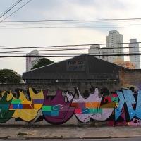 Graffiti_Sao-Paulo_Spraydaily_Allyouseeiscrimeinthecity_17