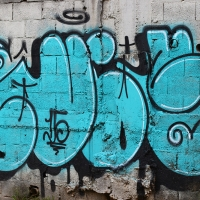Graffiti_Sao-Paulo_Spraydaily_Allyouseeiscrimeinthecity_21