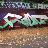 Wednesday Graffiti Walls Spraydaily 002_ROINS Photo @astrocapcph