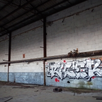 Wednesday Walls_Graffiti_Spraydaily_26 RICER 1 @jean_moner